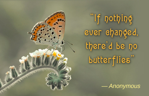 change-butterfly-quote